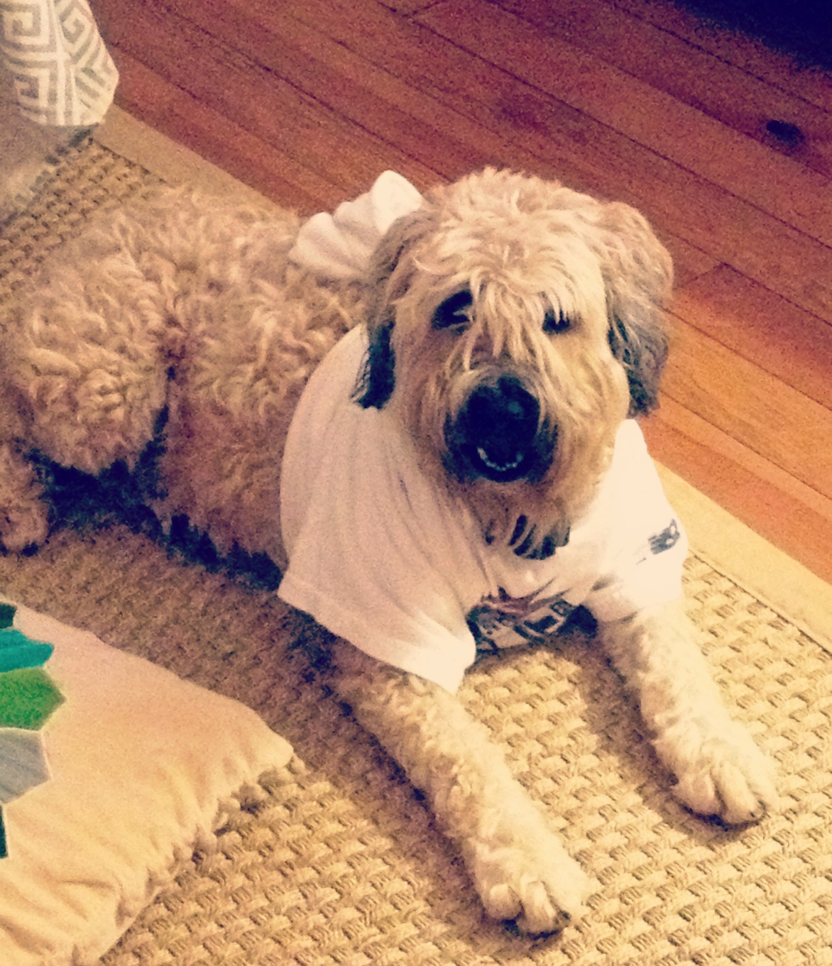 Summer Thunderstorms Fireworks And The Diy Thunder Shirt