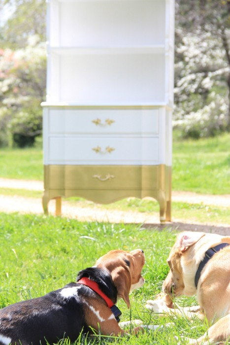 GOLD DIPPED HUTCH FOR PHOEBES ROOM AMKEOVER
