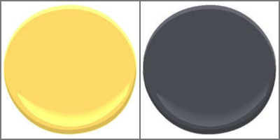 BENJAMIN MOORE YELLOW RAIN COAT AND BLACK BERRY