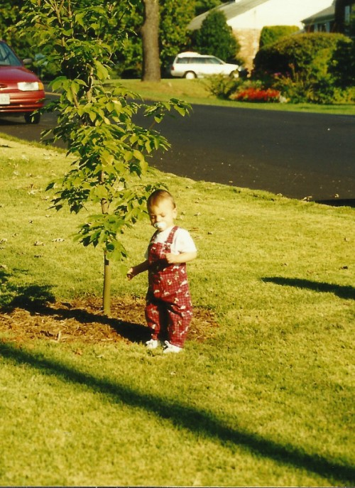 My Dad bought a tree for Tate the year he turned one...we planted in in our old front yard...It now casts a giant shadow across the sidewalk and is over 10 feet tall....
