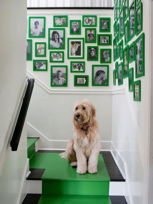 KELLY GREEN Stairwell Photo Wall, Contemporary, entrance/foyer, Melanie Turner Interiors