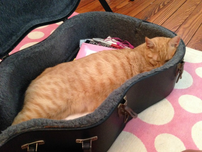 GUS IN GUITAR CASE