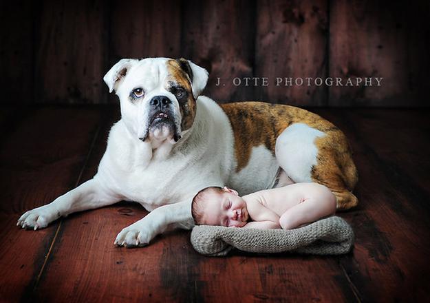 J. Otte Photography / jottephotography.com