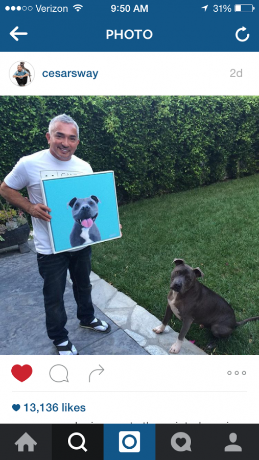 CESAR MILAN - INSTAGRAM - JUNIOR MEETS JUNIOR!