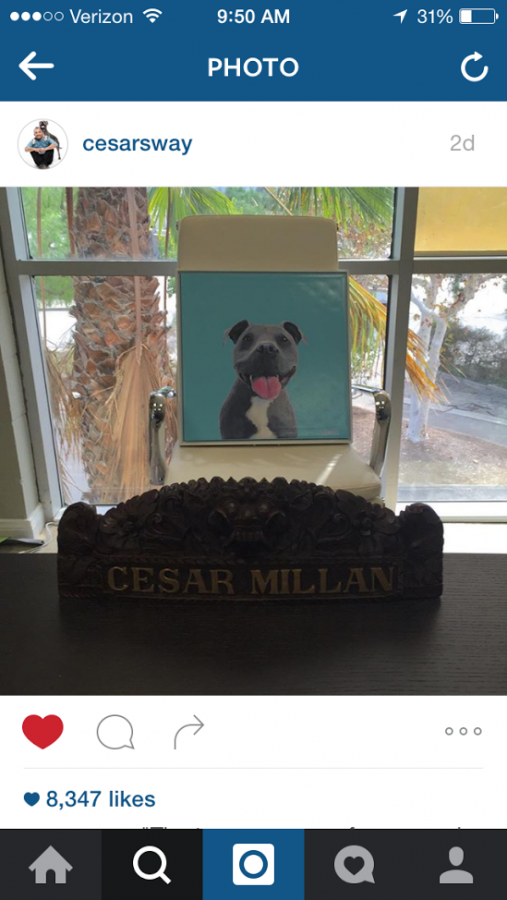 CESAR MILAN DISPLAYS HIS NEW PORTRAIT!