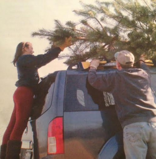 Phoebe and tree farm guy load up last years tree.